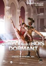 BALLET DU BOLCHOI - LA BELLE AU BOIS DORMANT