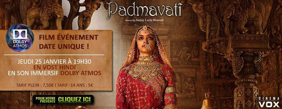 Photo du film Padmavati
